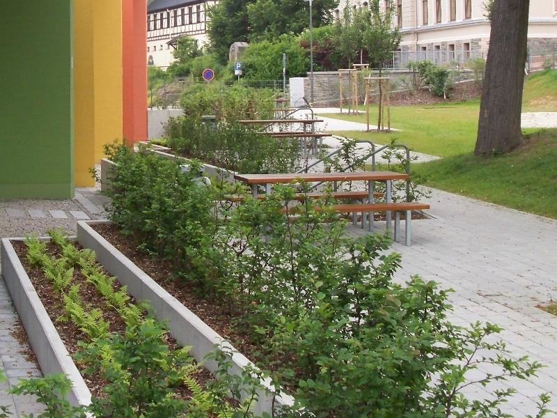 Bepflanzung der Außenanlage Grundschule Burkhardtsdorf